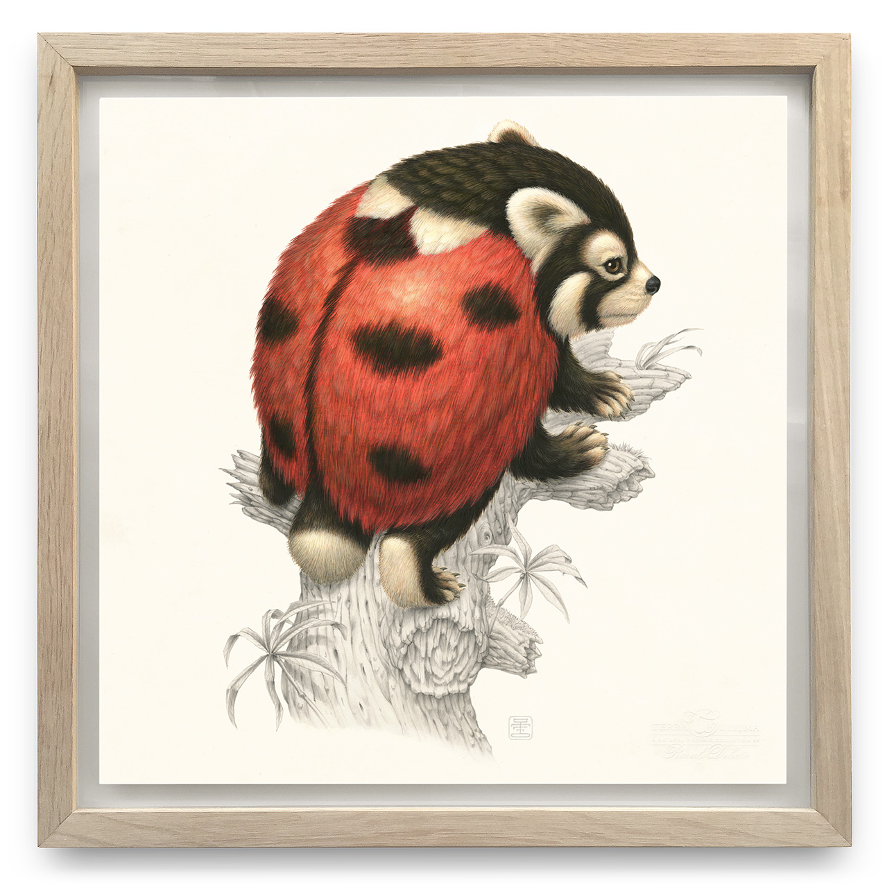 Coccinellursus Hexapedus | Acrylverf, aquarelverf en waspotlood op papier in handgemaakte houten lijst | Origineel | Raoul Deleo | Gallery Untitled