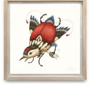 Garrulus Clipeatus | 55,5 x 55,5 cm | Aquarel, acrylverf, waspotlood in handgemaakte lijst | Origineel | Raoul Deleo | Gallery Untitled