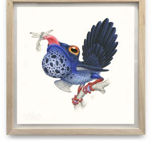 Rhipidurana Caerulea | 55,5 x 55,5 cm | Aquarel, acrylverf, waspotlood in handgemaakte lijst | Origineel | Raoul Deleo | Gallery Untitled