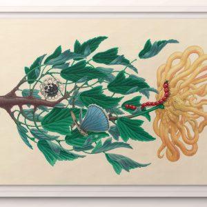 Nog geen titel | Origineel | 90 x 140 cm (exclusief lijst) | Aquarel, acrylverf in handgemaakte houten lijst. Inlusief sample in vitrinelijst | Raoel Deleo | Gallery Untitled