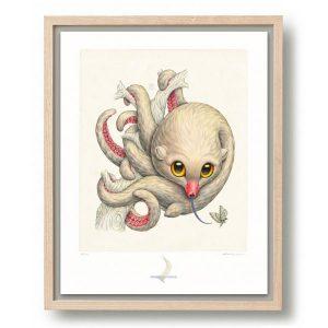 Raoul Deleo | Octopossum Leucostolum | Oplage: 100 | Giclee print op Hahnemühle papier in houten lijst | 50 x 40 cm | Gallery Untitled