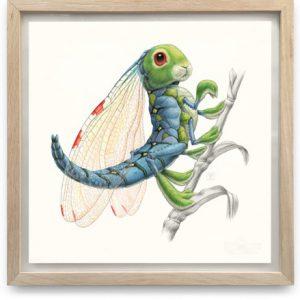 Libellula Lagoformosa | 55,5 x 55,5 cm | Acrylverf, aquarelverf en waspotlood op papier in handgemaakte houten lijst | Origineel | Raoul Deleo | Gallery Untitled