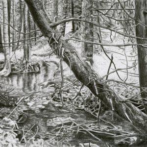 Yearning 04 (2014) | 24 x 18 cm | Potlood op papier | Zaida Oenema | Galerie Untitled | Verkocht (prints beschikbaar)