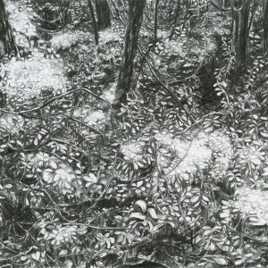 Yearning 08 (2014) | 24 x 18 cm | Potlood op papier | Zaida Oenema | Galerie Untitled | Beschikbaar