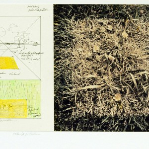 Studie voor landschap (geel) | Nelis Oosterwijk | Galerie Untitled | Beschikbaar