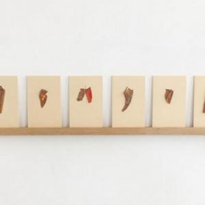 Layered Colors | Oplage 1/1 | 9 x 14,5 cm | div. kleuren gedroogde lak schilfers (terp.) op karton vastgespeld | Floris Hovers | Gallery Untitled
