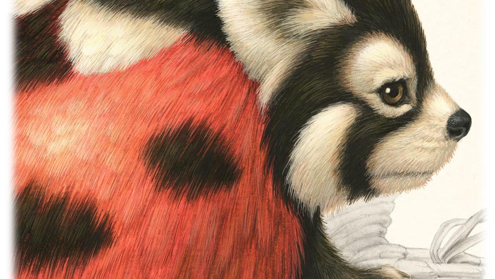 Coccinellursus Hexapedus | Raoul Deleo | Gallery Untitled
